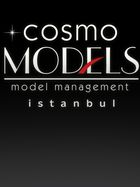 COSMO Model Mgmt