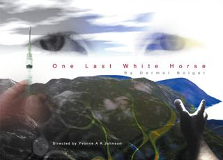 My eyes were used for the advertisement for the play 'One Last White Horse'